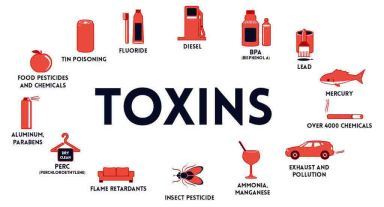 Environmental toxins Hypothyroidism